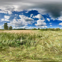 Sommerwiese in der Uckermark - 360˚ HD-Panorama © René Blanke