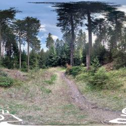 Thüringer Wald - Wanderweg zum Gehlberg - 360˚ HD-Panorama © René Blanke