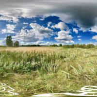 Idyllische Wildwiese in der Uckermark - 360˚ HD-Panorama © René Blanke Panoramafotograf