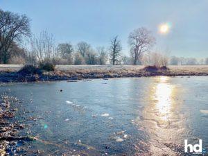 Park Babelsberg: Alles sehr frostig - Eine eingefrorene Hagebutte am Strauch - HD-Panorama © René Blanke