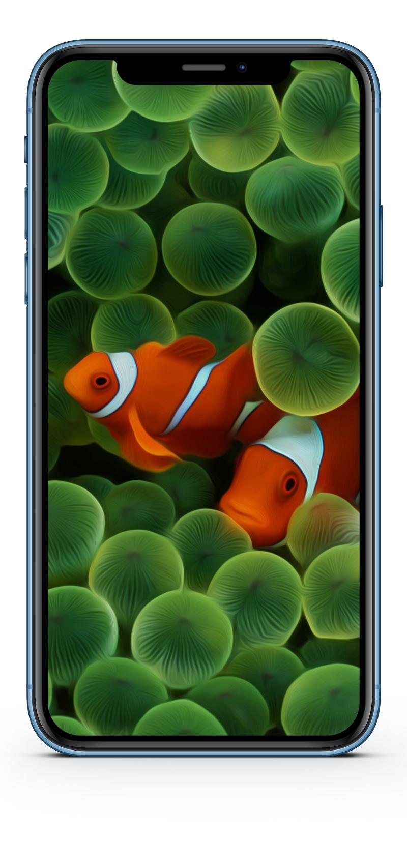 "Hintergrundbild (Wallpaper) ""Originial iPhone"" (iOS 1) optimiert für iPhone XR"